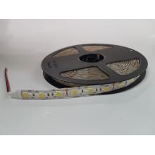 LED TRAK 12V SMD5050 TOPLO BELA 4000-4500K P65 1154 5m